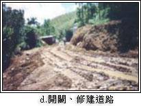 開闢修建道路